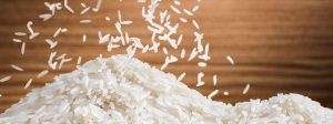 rice exporters in India